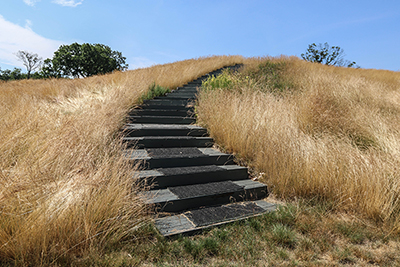 Stairs leading through fescue.